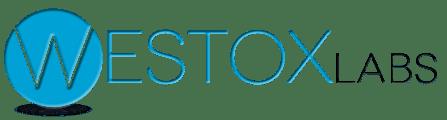 westox_logo_shadow